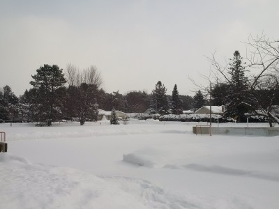 Photo of Merivale Gardens