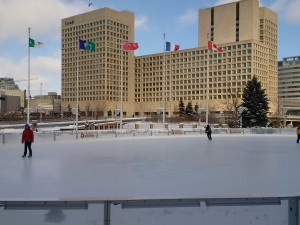Photo of Rink of Dreams